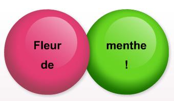 Offrir Des Dragibus Personnalis S Fleur De Menthe