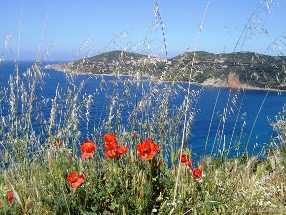 Les vacances la mer ou la montagne fleur de menthe - Vacances en montagne locati architectes ...