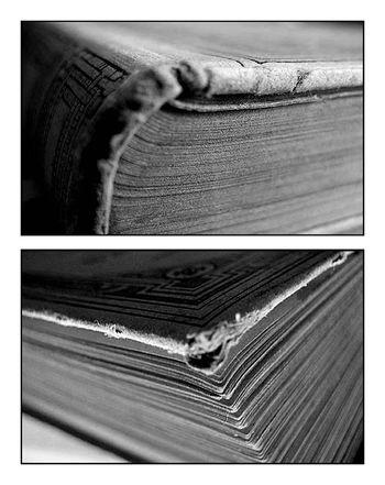 Prose, bibliothèque, et rêveries…