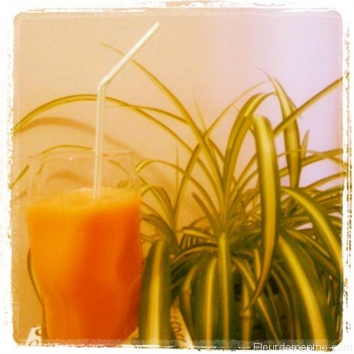 boisson aux carottes