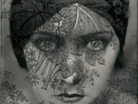 ac_va_edward-steichen-gloria-swanson-1928_courtesytaftmuseum_widea