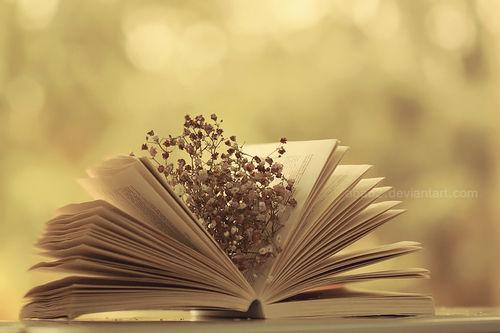 book cute