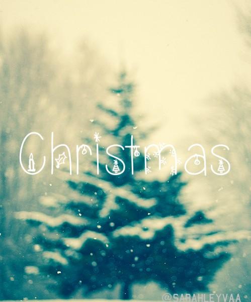 Joyeux Noël à chacun d'entre vous