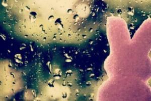 dimanche sous la pluie