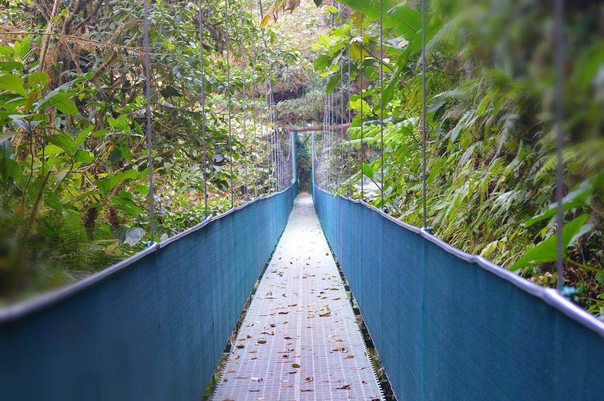 monteverde cost rica
